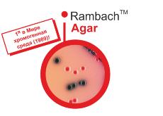 Rambach Agar